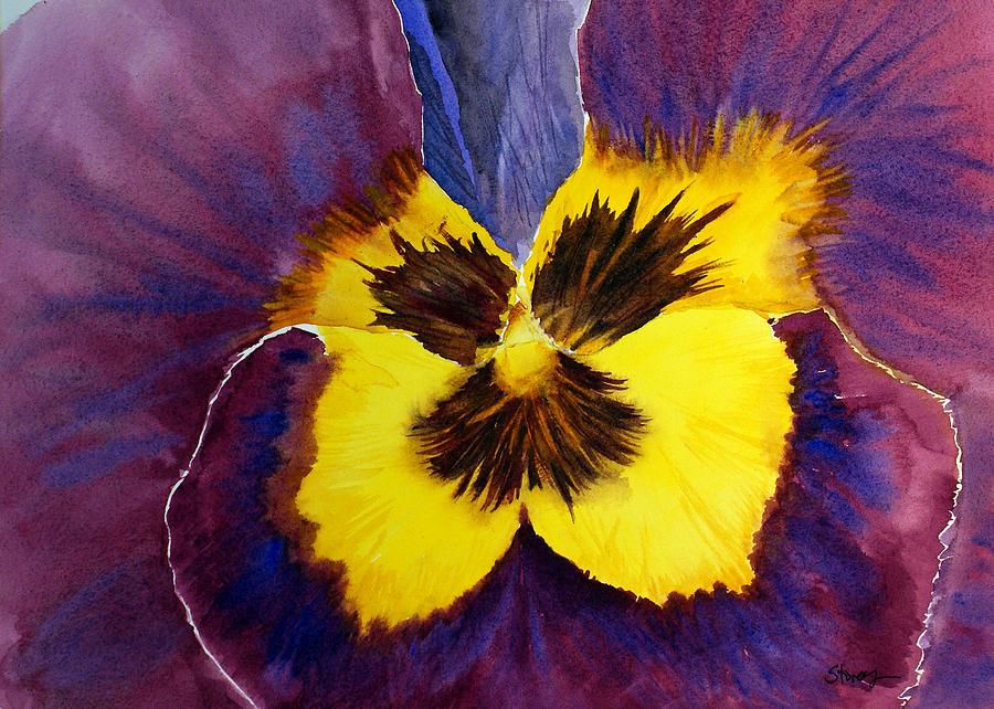 Pansy Painting - Pansy by Tina Storey