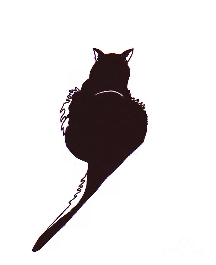 Cats Drawing - Panther  by Rachel Lowry