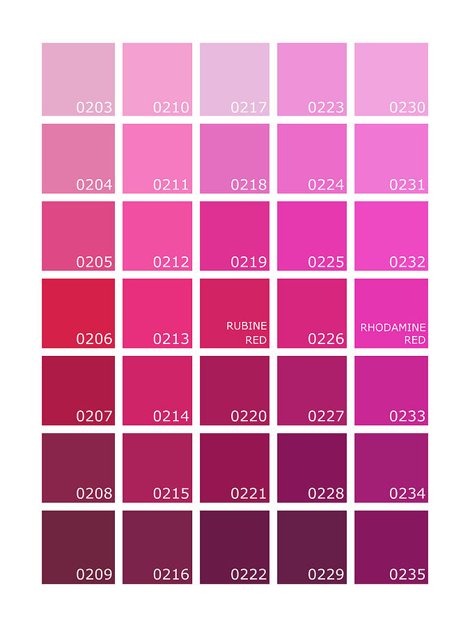 Pantone Shades Of Pink Photograph by Mark Rogan