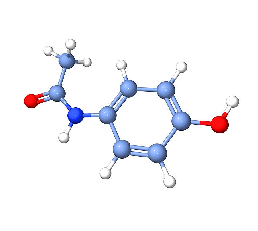 Acetaminophen Photograph - Paracetamol Molecule by Dr Tim Evans