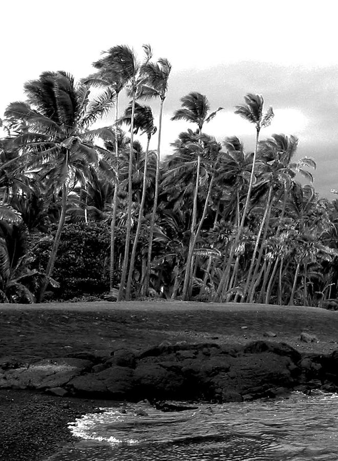 Landscape Photograph - Paradise In Black And White by Halle Treanor