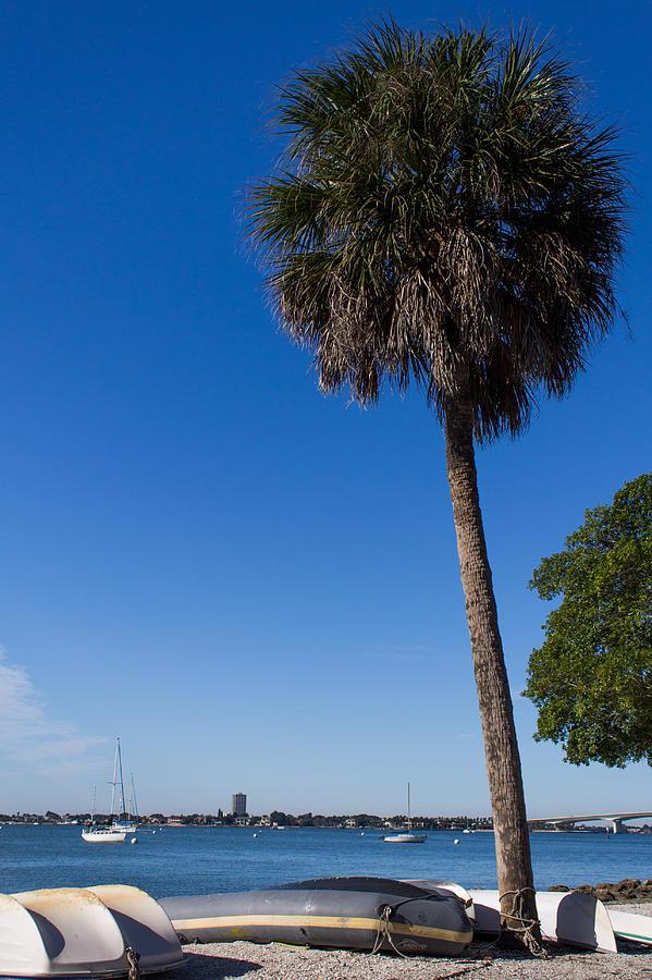 Marina Jacks Photograph - Paradise In Sarasota, Fl by Michael Tesar