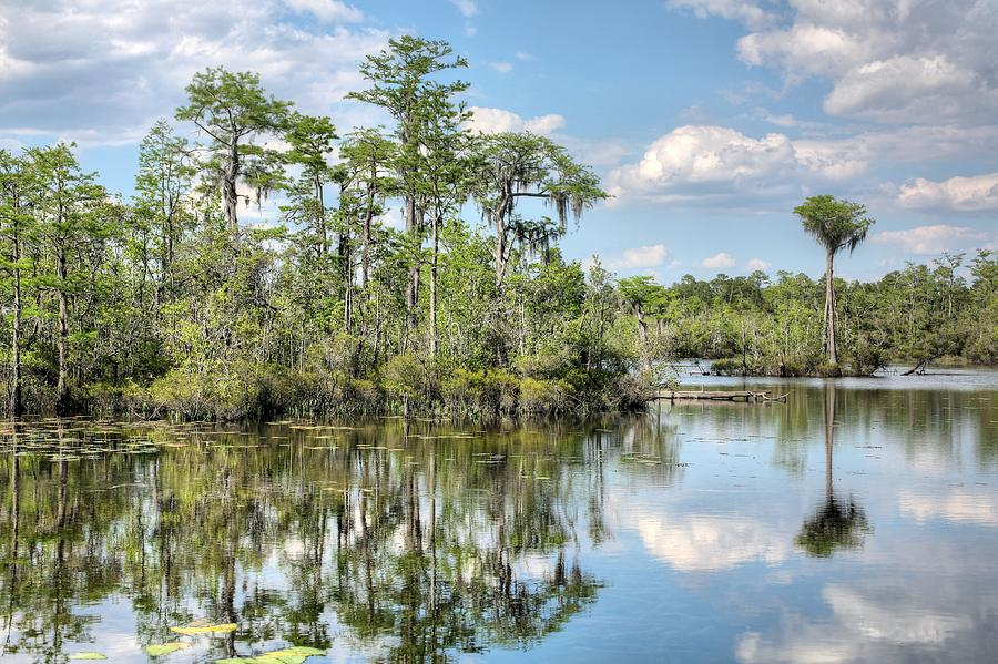 Natural Florida Photograph - Paradise  by JC Findley