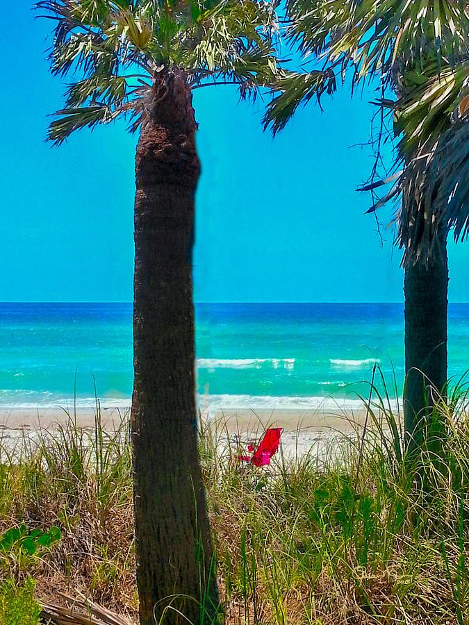 Paradise on Anna Maria Island by Susan Molnar