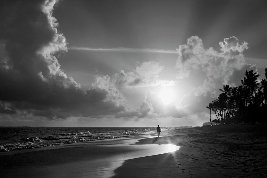 Hawaii Photograph - Paradise Walk by Daniel Hagerman