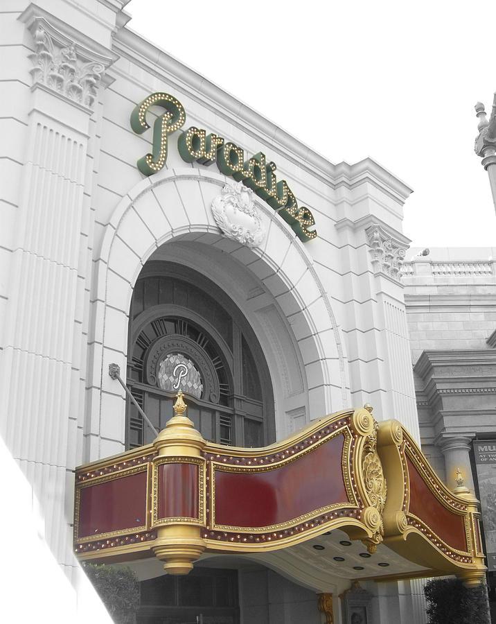 Theatre Photograph - Paradisetheatre by Audrey Venute