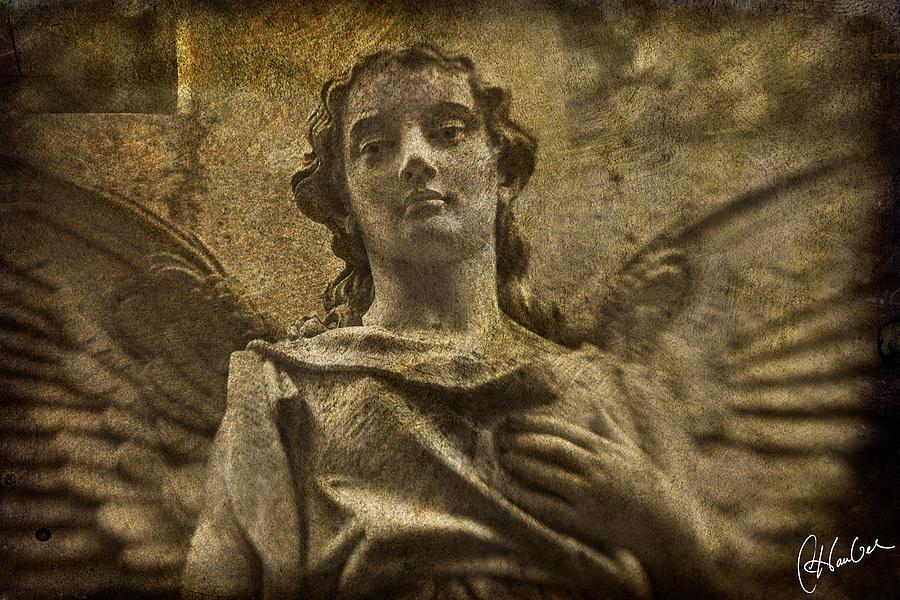 Angel Photograph - Paragon by Christine Hauber