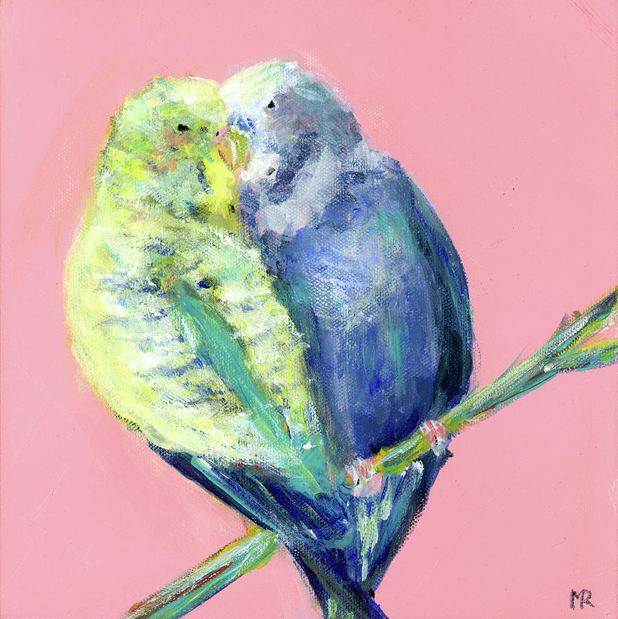 Parakeets - Budgerigars by Michelle Reeve