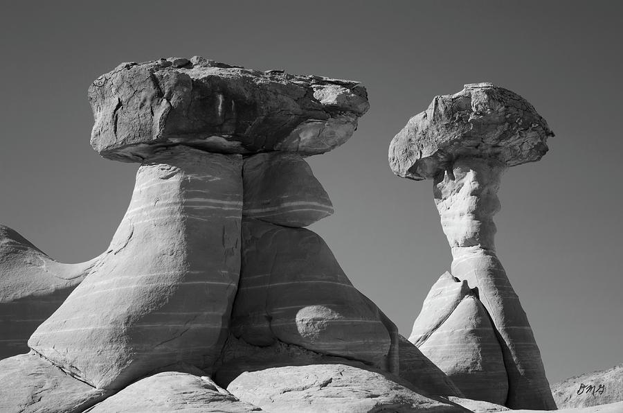 Paria Utah XIII BW by David Gordon