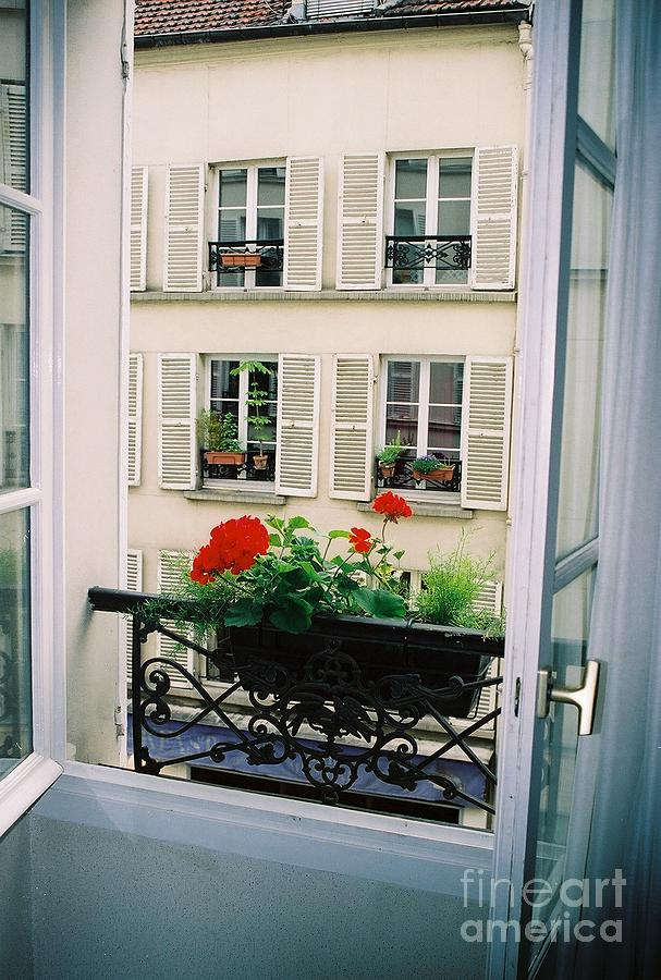 Window Photograph - Paris Day Windowbox by Nadine Rippelmeyer