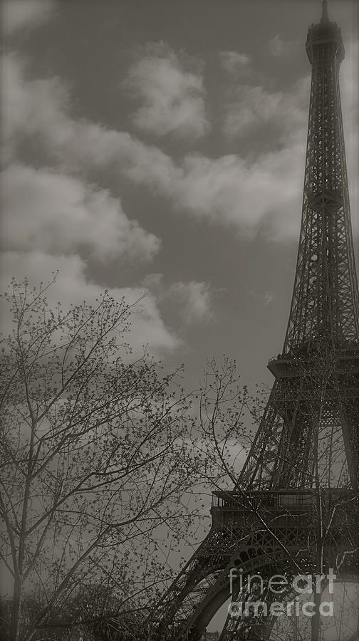 Paris Photograph - Paris In The Spring by Louise Fahy