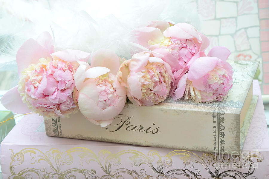 Paris Pink Peonies Romantic Shabby Chic French Market Peonies Paris Romantic Peonies And Book Art
