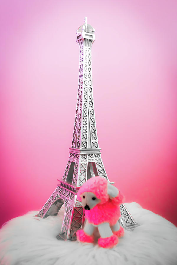Stuffed Animals Photograph - Paris Poodle by Aaron Geraud