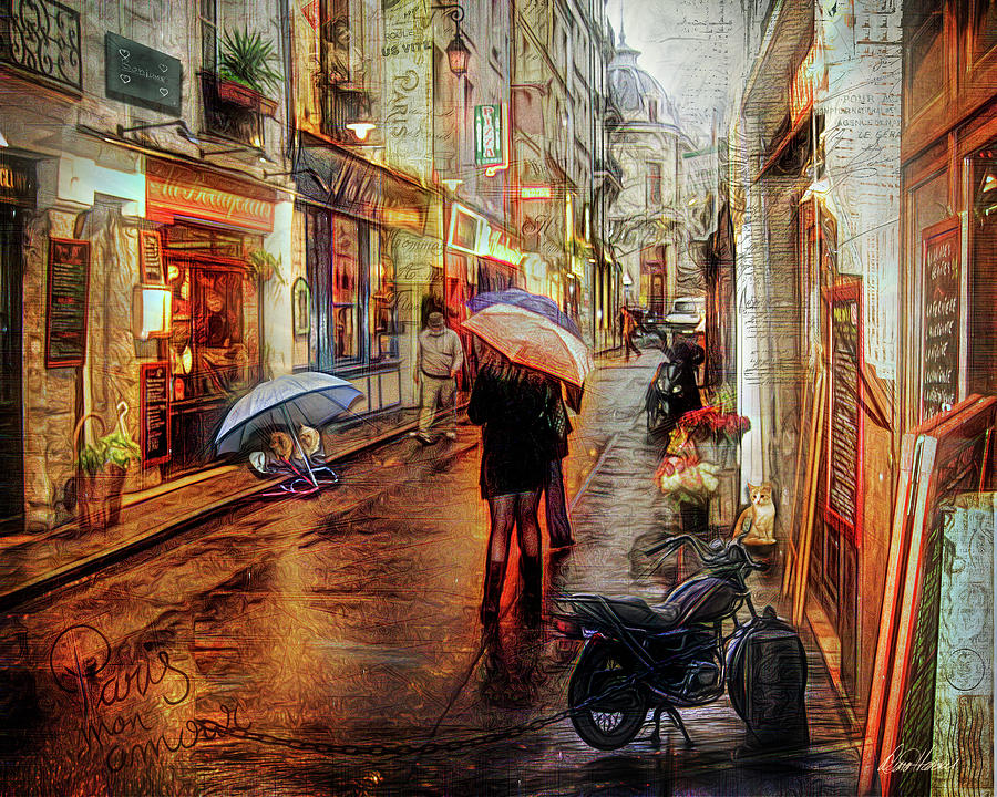 Paris Rain by Diana Haronis