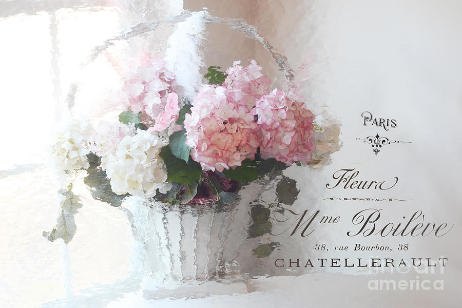 Paris shabby chic romantic pink white hydrangeas in basket paris paris shabby chic romantic pink white hydrangeas in basket paris romantic basket of flowers photograph by mightylinksfo