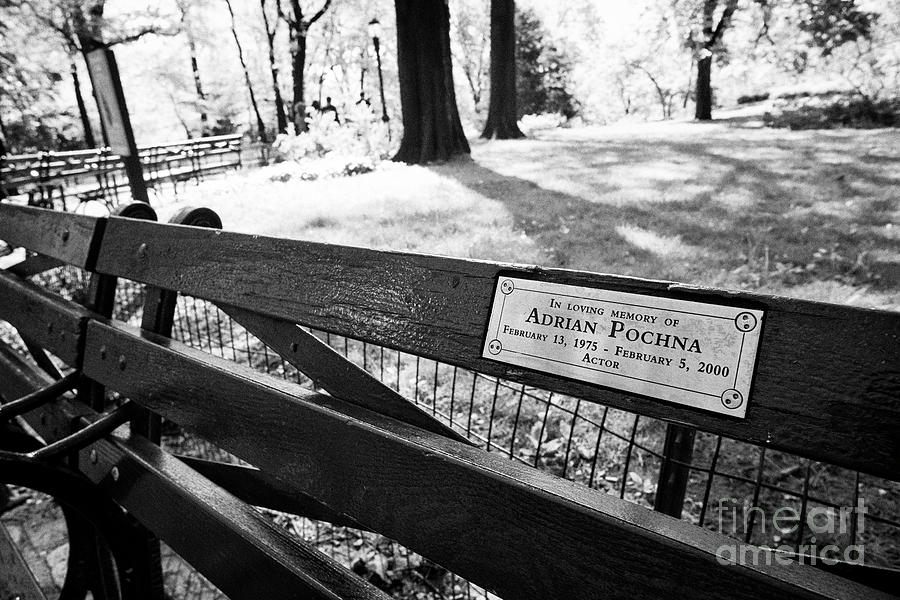 Park Bench In Central Park Dedicated To Adrian Pochna New York City