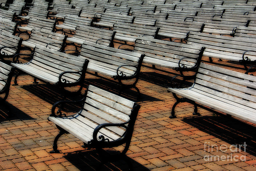 Bench Photograph - Park Benches by Perry Webster