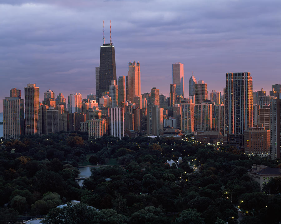 Color Image Photograph - Park In A City, Lincoln Park, Chicago by Panoramic Images