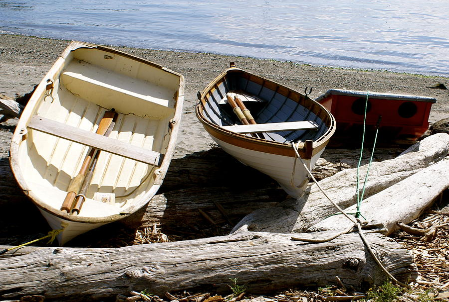 Row Boats Photograph - Parked Boats by Sonja Anderson