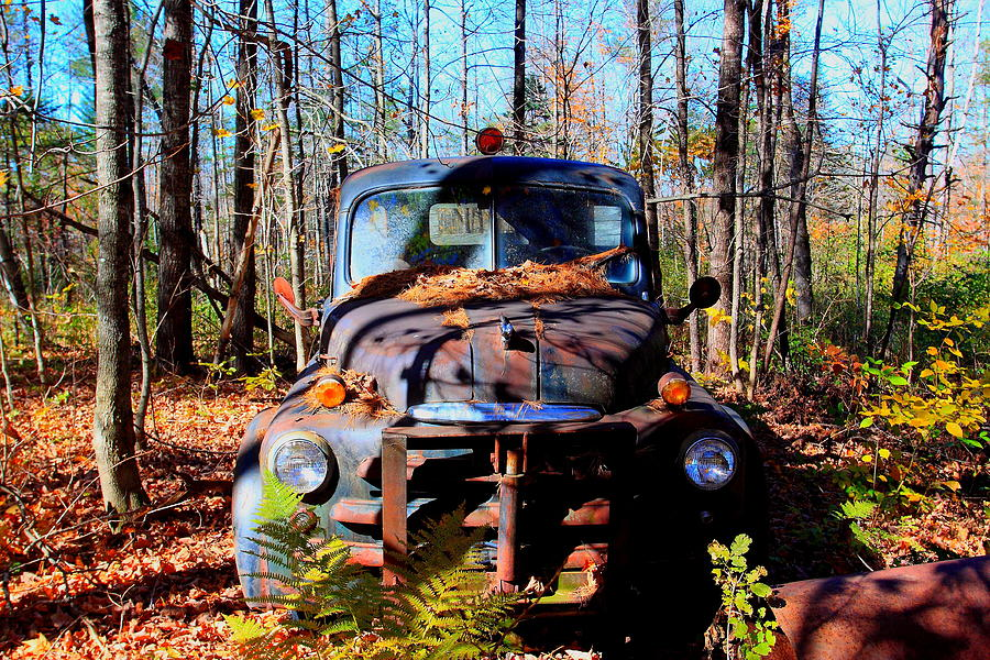 Truck Photograph - Parked by Tom Johnson