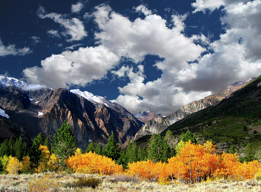 Horizontal Photograph - Parker Canyon Fall Colors Californias High Sierra by Bill Wight CA