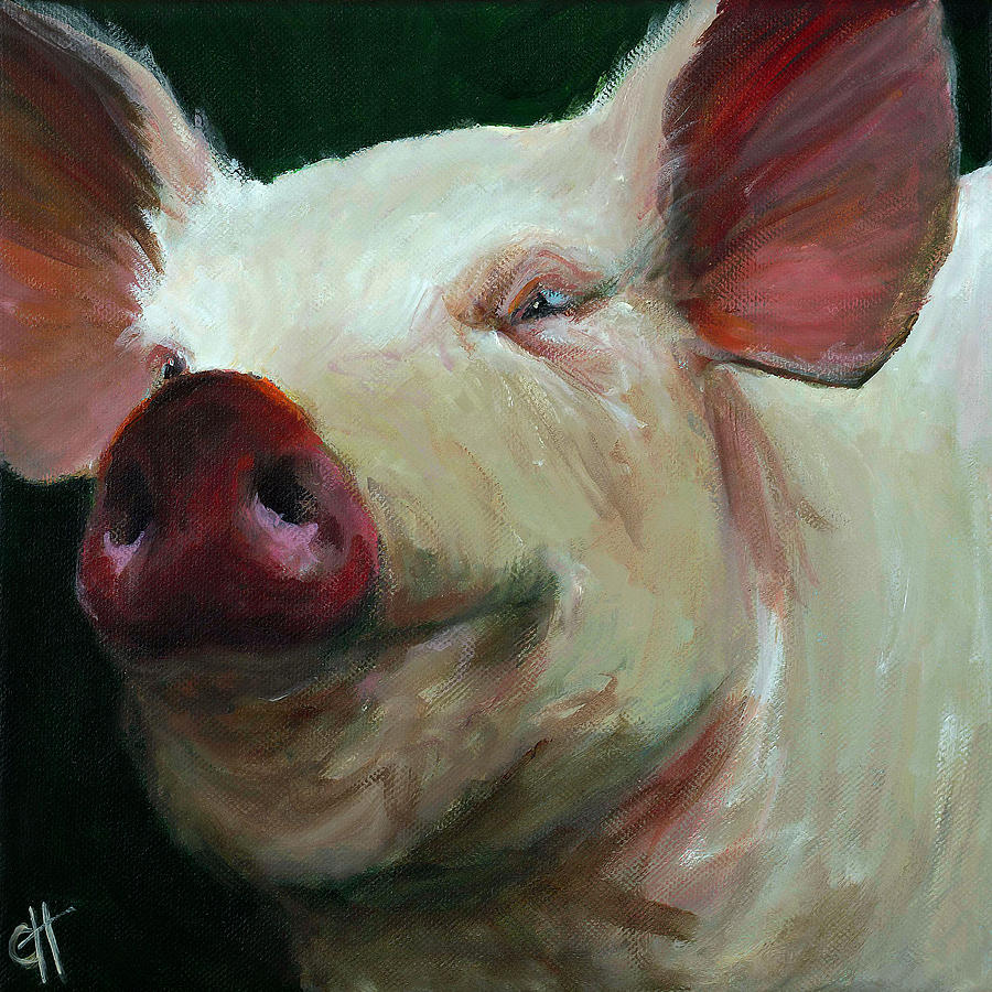 Abstract Pig Paintings Www Imgkid Com The Image Kid