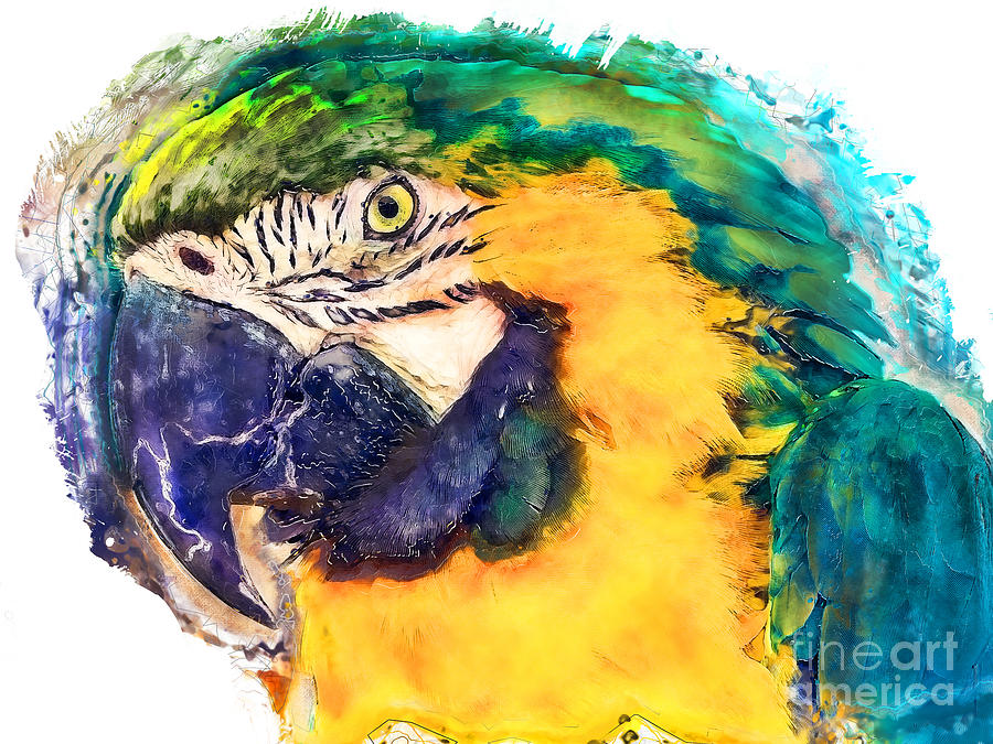 Parrot Ara Watercolor Painting Painting by Justyna JBJart