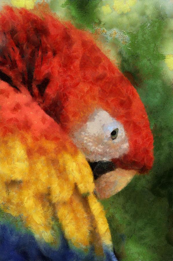 Parrot Digital Art - Parrot by Elaine Frink