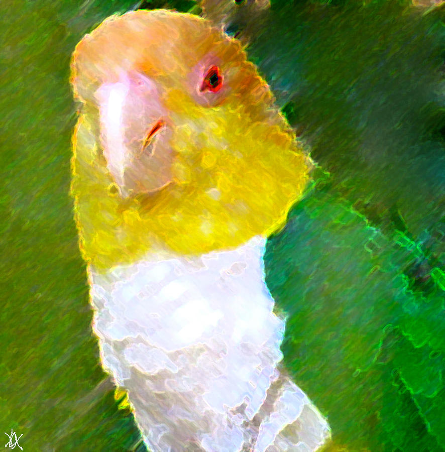Green Parrot Painting - Parrot Grace by Debra     Vatalaro