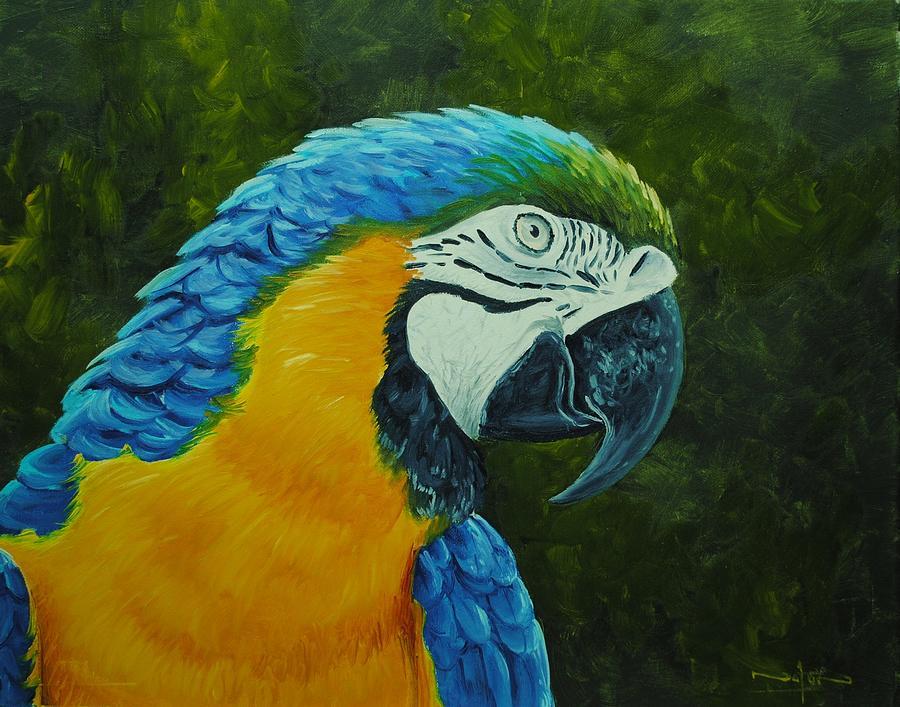 Oil Painting - Parrot by Nolan Clark