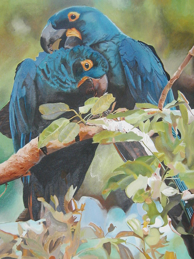Animals Painting - Parrots In Love by Bennie Parker