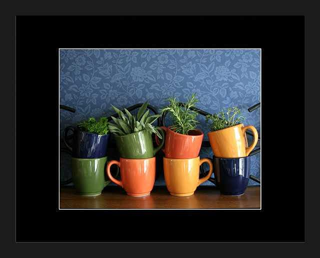 Stoneware Photograph - Parsley Sage Rosemary and Thyme by Brooke Chao