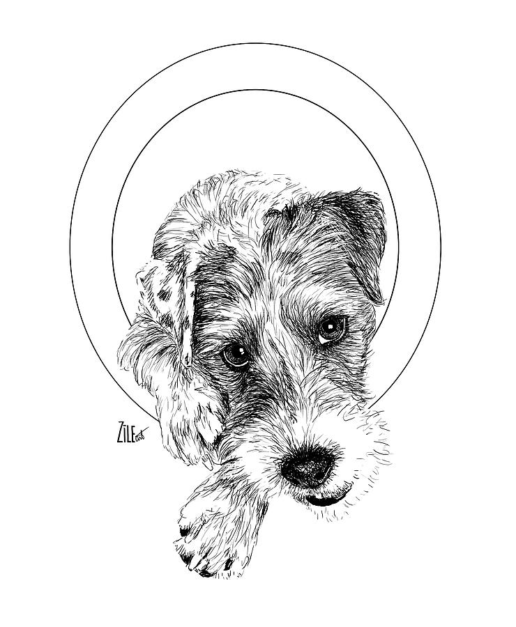 Dog Digital Art - Parson Russell Terrier @elmo.parson by ZileArt