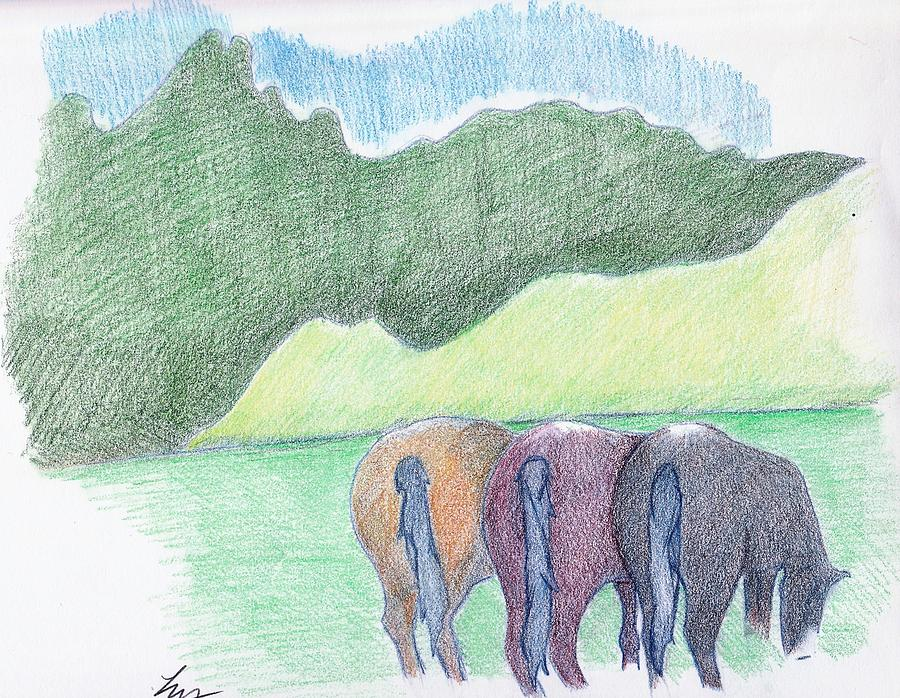 Horse Drawing - Party Of Three by Loretta Nash