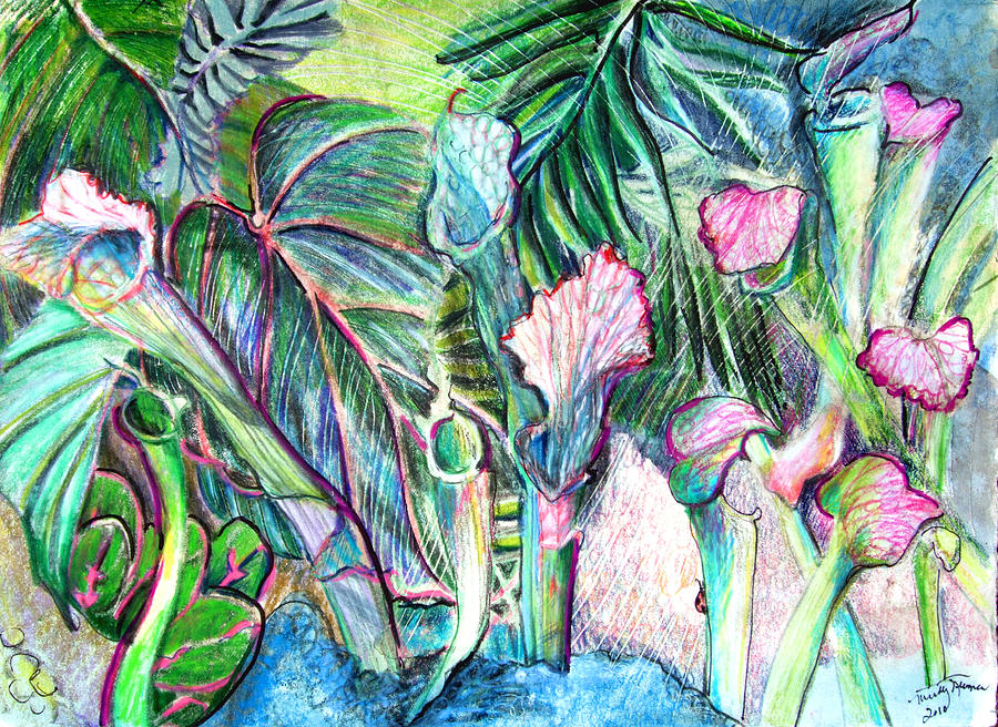 Botanical Painting - Partying With The Pitcher by Mindy Newman