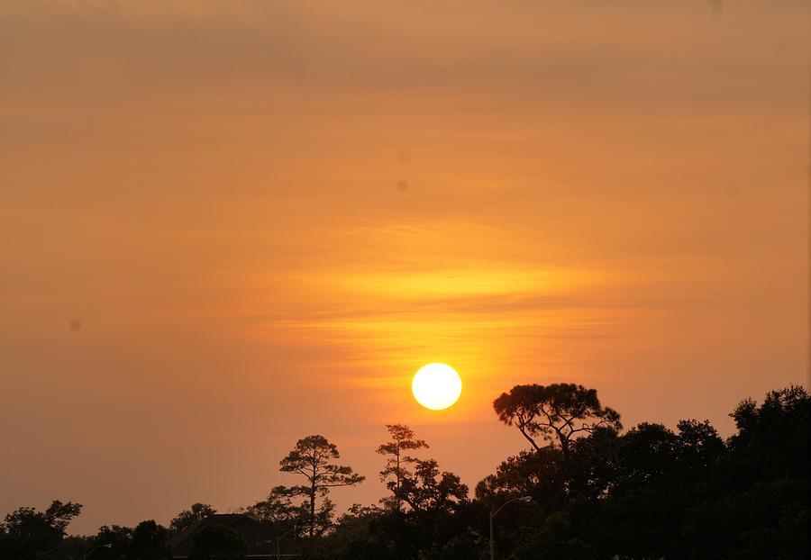 Pascagoula Photograph - Pascagoula Sunset by Rosalin Moss