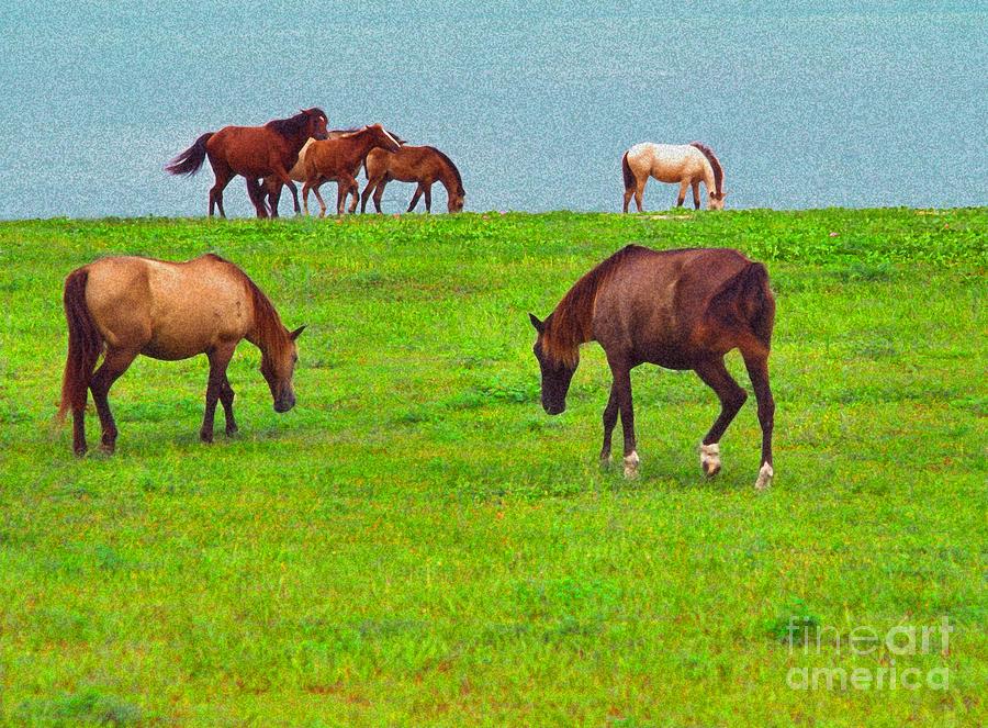 Paso Fino Digital Art - Paso Fino Horses Graze By Seaside by Thomas R Fletcher
