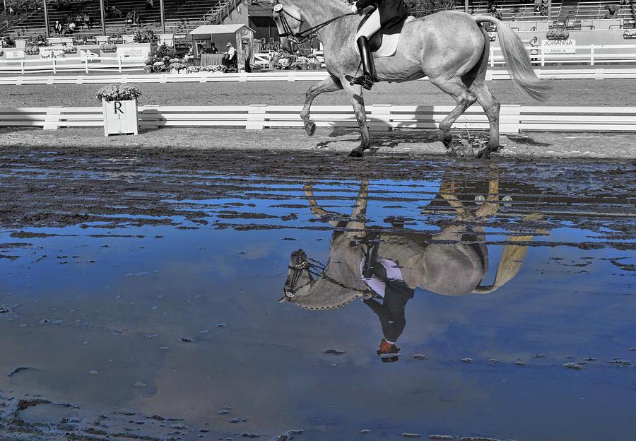 Horse Photograph - Passage Duet by JAMART Photography