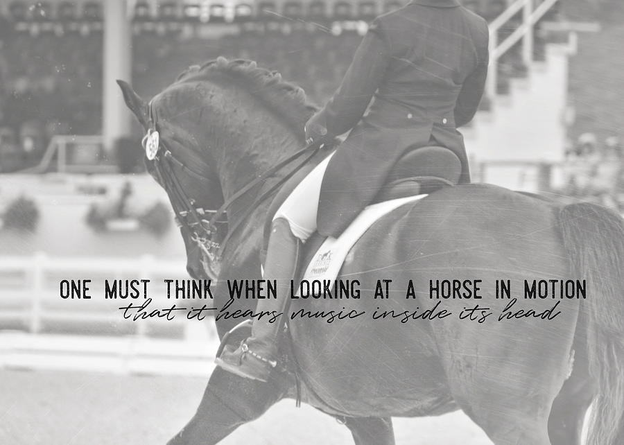 Horse Photograph - Passage Quote by JAMART Photography