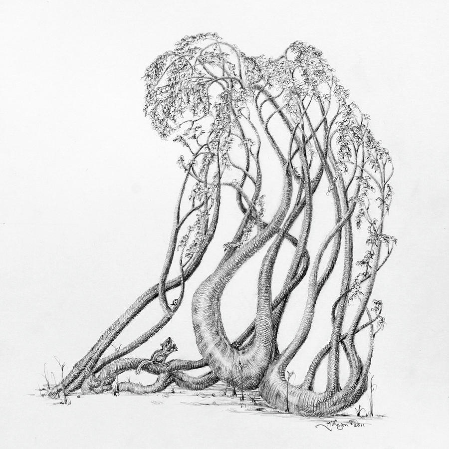 Tree Dancer Drawing - Passing Glances by Mark Johnson