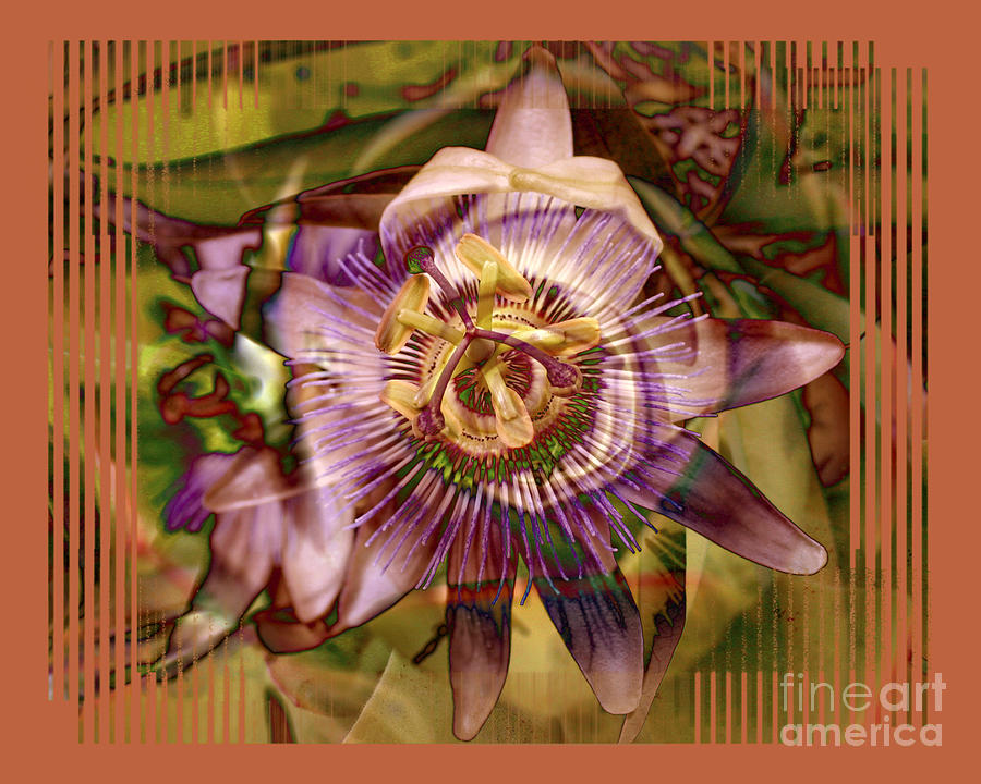 Flower Photograph - Passion by Chuck Brittenham