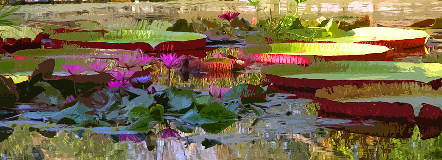 Water Lilies Photograph - Passion for Beauty by John Lautermilch