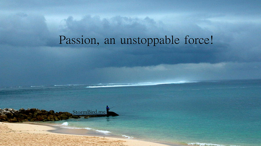 Bali Photograph - Passion by Hilary WILCHER