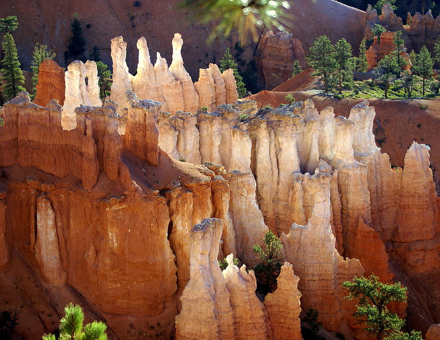 Bryce Canyon National Park Photograph - Pastel Bryce by Marty Koch