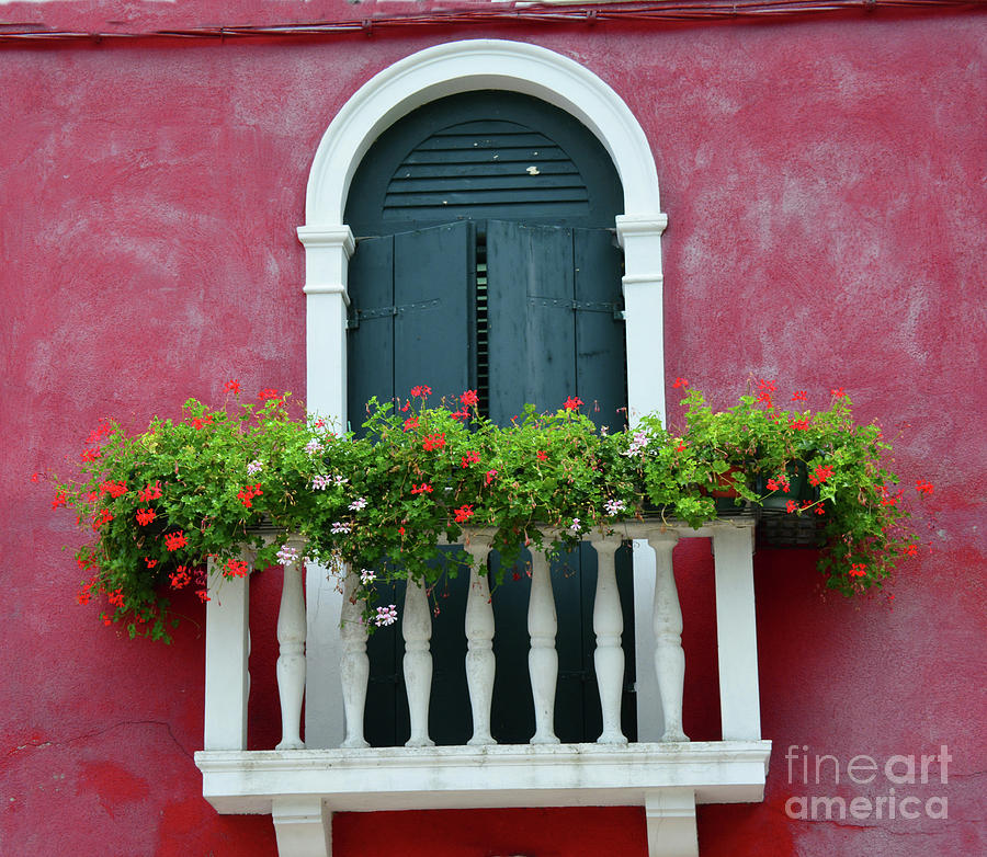 Window Photograph - Pastel Colors Of Burano  by Frank Stallone