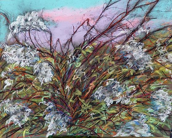 Pastel Drawing - Pastel by Jody  Fallon