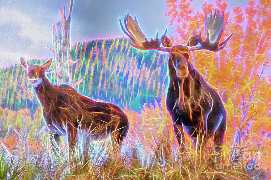 Pastel Moose Couple by Ray Shiu