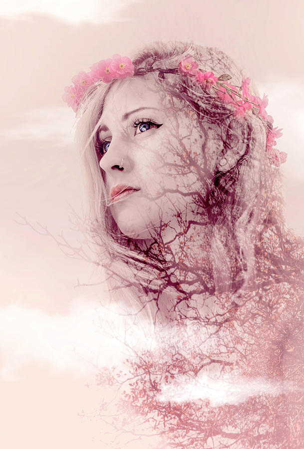 Flowers Photograph - Pastel Morning by Svetlana Sewell