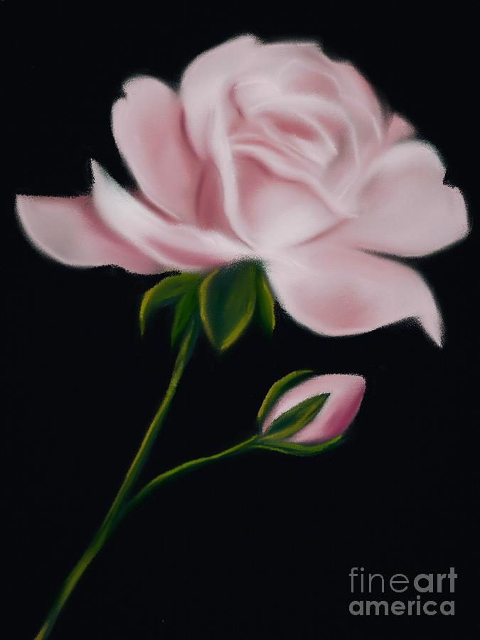 Floral Digital Art - Pastel Pink Rose by Michele Koutris
