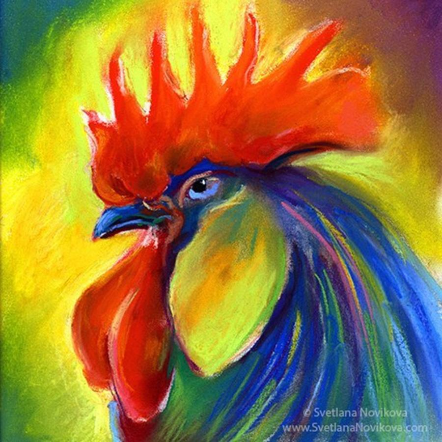 Pastel Photograph - Pastel Rooster By Svetlana Novikova ( by Svetlana Novikova